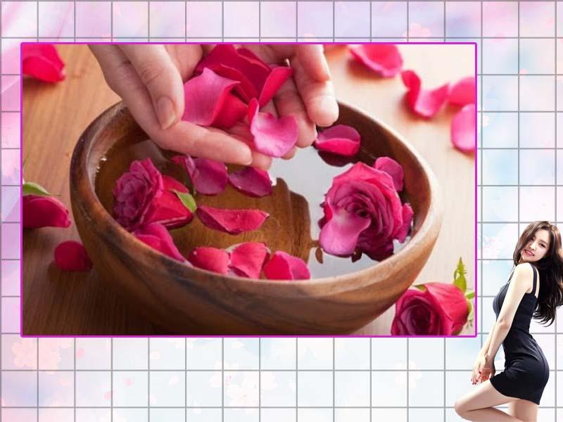 Chọn cánh hoa hồng tươi, không bị sâu làm hư hại, có hương thơm nhẹ nhàng